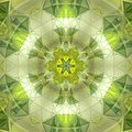 Pretty green floral sun triangle mandala Royalty Free Stock Photo