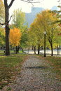 Pretty landscape with colorful trees and brick walkways beautiful that meander through the park fall foliage on that line both Royalty Free Stock Images