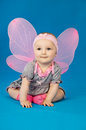 Pretty little fairy baby on a blue background in costume butterfly Stock Image