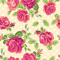 Pretty pink roses seamless background Stock Images