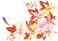Pretty soft card with vector lily Royalty Free Stock Images