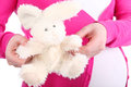 Pretty toy rabbit  and belly of pregnant woman Stock Image