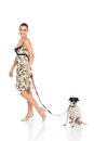 Pretty woman walking dog isolated white Stock Images