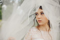 Pretty young bride looks away being hidden under a veil Royalty Free Stock Photo