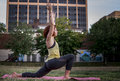 Pretty Young Woman Practicing Yoga in the Park (Low Lunge) Royalty Free Stock Photo