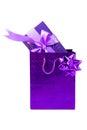 Prezent boxes&bags-6 Zdjęcia Royalty Free