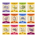 Price cards with different fruits illustrations in hand drawn style. Farmer pictures
