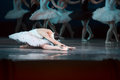 Prima ballerina white swan on stage bow and curtsey to the audience against other dancers ballet lake the opera house in kiev Royalty Free Stock Photography