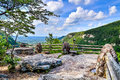 Primary overlook at cloudland canyon state park in georgia Royalty Free Stock Photo