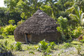 Primitive hut on lifou loyalty islands new caledonia Royalty Free Stock Images