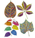 Primitive painted leaves set rainbow african style colored plants isolated Royalty Free Stock Photos