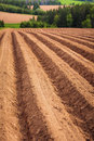 Prince edward island farm field Photos stock