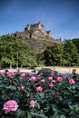 Prince street gardens edinburgh scotland castle with flowers Royalty Free Stock Photos