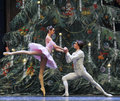The prince to Clara confession-Tableau 3-The Ballet Nutcracker Royalty Free Stock Photo