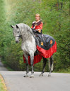 Princess on horse Royalty Free Stock Photography