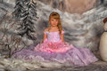 Princess in a pink dress cute girl on winter background studio Stock Photography