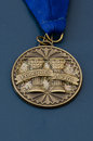 Principal s award medal copper with blue background nikon raw file was provided Stock Photography