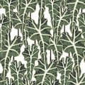 Seamless tropical leaves pattern. Modern graphical floral background allover print.