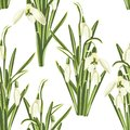 Seamless pattern with bouquet of white snowdrop flowers on a white background.