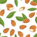 Almond nuts, green leaves seamless pattern. Food vector illustration