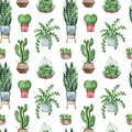 Watercolor potted plants texture Royalty Free Stock Photo