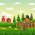 A scarecrow in the pumpkin garden Royalty Free Stock Photo