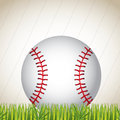 Print baseball ball on the grass over white background vector illustration Royalty Free Stock Photo
