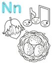 Printable coloring page for kindergarten and preschool. Card for study English. Vector coloring book alphabet. Letter N. nuts,