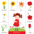 Printable flash card for flowers and little girl smelling flower Royalty Free Stock Photo