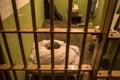 Prison cell on Alcatraz Island, San Francisco Royalty Free Stock Photo