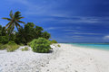 Pristine remote coco palm beach, Christmas Island, Kiribati Royalty Free Stock Photo