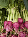 Produce - organic beets background Royalty Free Stock Photo