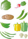 Produce - Vegetables Stock Image
