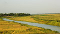 Productive bangladesh its a description in brief about paddy is its main crop theres a lot of rivers and canals in which keep this Royalty Free Stock Photo
