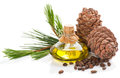 Products of cedar tree. Royalty Free Stock Photo