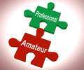 Professional Amateur Puzzle Shows Expert And Apprentice Royalty Free Stock Photography