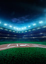 Professional baseball grand arena in night Royalty Free Stock Photo