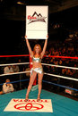 Professional Boxing round card girl Stock Images