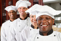 Professional chefs Stock Image