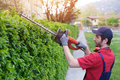 Professional gardner dressed with safety overalls using an hedge Royalty Free Stock Photo