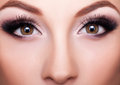 Professional make up close up shot beauty concept Stock Image