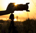 Professional photo camera on a tripod silhouette in the sunset with the lens hood in the hands of women Royalty Free Stock Photo