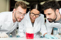 Professional young chemists looking at flask with reagent in laboratory Royalty Free Stock Photo