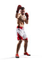 Professionl boxer is isolated on white background Stock Photo