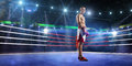 Professionl boxer is standing on the ring grand arena Royalty Free Stock Photo