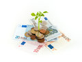 Profitable investment concept image of euro banknotes and coins as a soil for growing seedling symbolizing wealth Stock Images