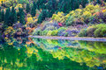 Profusion of autumn color on the lake beauty reflection Royalty Free Stock Images