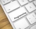 Programming - Inscription on White Keyboard Key. 3D.