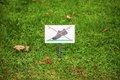 Prohibiting sign on the lawn. On the lawn do not walk Royalty Free Stock Photo