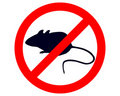 Prohibition sign for mice Royalty Free Stock Images